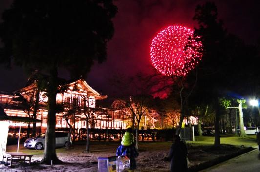 Nara Park view
